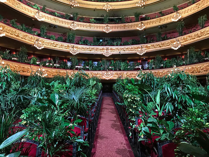 barcelona-opera-house-reopens-plays-to-plants-47.jpg
