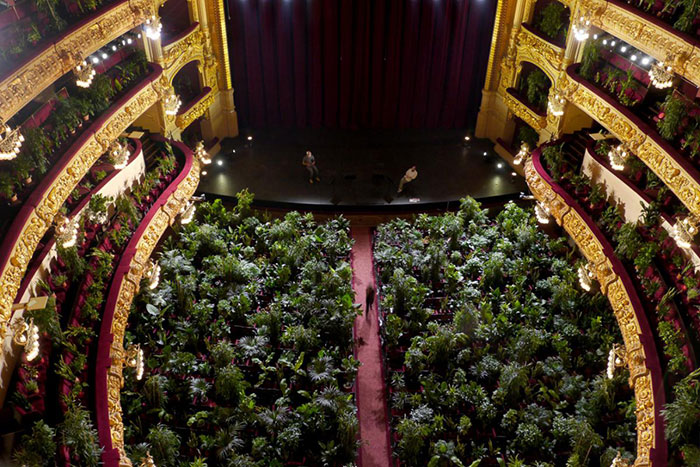 barcelona-opera-house-reopens-plays-to-plants-51.jpg