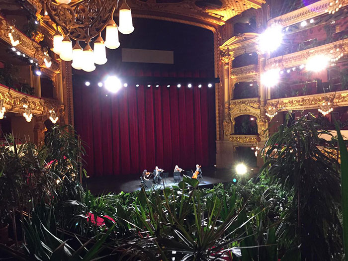 barcelona-opera-house-reopens-plays-to-plants-55.jpg